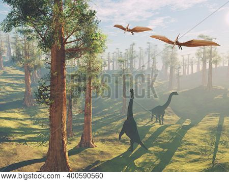 Brachiosaurus In The Forest And Pterodactyls Flying Above . This Is A 3d Render Illustration .