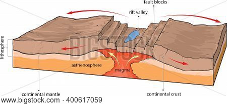 Vector Illustration Shows Divergence Of Continental Tectonic Plates.