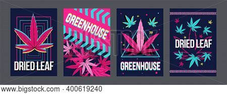 Radiant Bright Cannabis Posters Design With Dried Leaves. Dark Brochure For Ganja Smoking Store. Hem