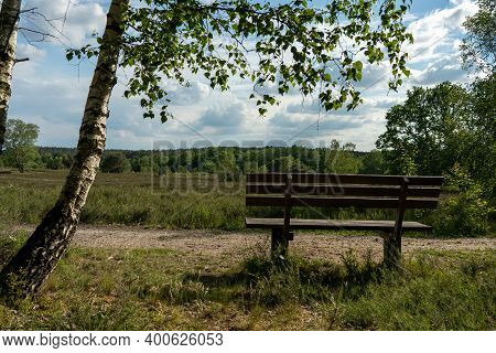 Old Wooden Bench In The Hillside Landscape In The Nature Preservation Area Of The Lueneburger Heide