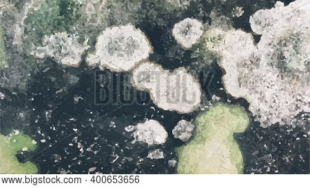 The Image Of Black Mold On The Wall Or On The Ceiling, In Vector.
