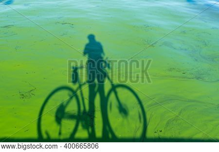 Cyclist Shadow With Bicycle Standing Against River Covered With  Green Slush Of Cyanobacterias As A