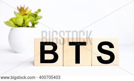 Bts, Text On Wood Blocks On White Background Near Plant