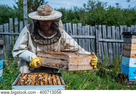 Beekeeper In Protection Suit Inspecting His Row Of Beehives At Apiary With Bees Swarming Around Him
