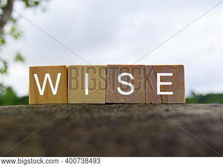 Wise Text On Wooden Block On Top Of Big Stone With Blurred Background