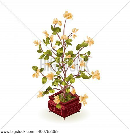 Cherry Blossoms. An Ornamental Houseplant In A Chinese Or Japanese Style. Asian Houseplant. Flowers