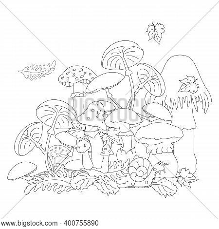Poisonous Mushrooms In A Clearing Among The Foliage That Look Very Attractive. A Snail Slowly Creepi