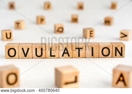 Ovulation - Word From Wooden Blocks With Letters, Discharge Of Ova From The Ovary Ovulation Concept,