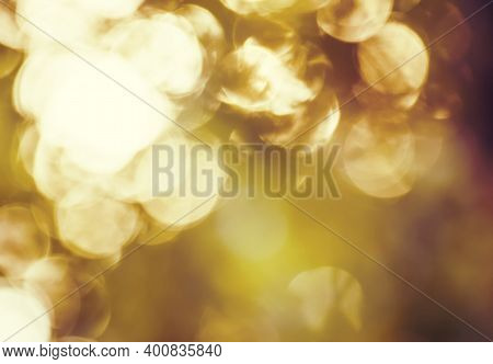 Autumn Blurred Background With Natural Bokeh With Copy Space