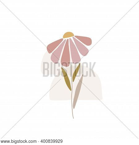 Daisy Silhouette. Marguerite Flat Vector Illustration Isolated White Background. Scandinavian Style.