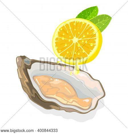 Raw Fresh Clam In Shell With Half Of Lemon, Seafood, Squeeze Lemon Drops On Oyster. Vector Nutritiou