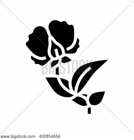 Flowering Plant Peas Glyph Icon Vector. Flowering Plant Peas Sign. Isolated Contour Symbol Black Ill