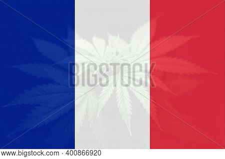 Medical Cannabis In The France. Decriminalization Weed In France. Leaf Of Cannabis Marijuana On The