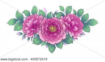 Hand Drawn Pink Peony Flowers And Leaves Bunch Isolated On White. Vector Line Art Elegant Floral Arr
