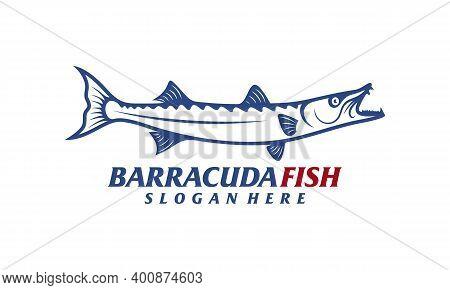 Barracuda Fish Design Vector Illustration, Creative Barracuda Fish Logo Design Concepts Template, Ic