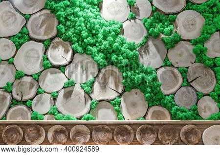 Round Cuts Of Trees With Growth Rings And Green Moss. Wall Panel With Wood And Moss.