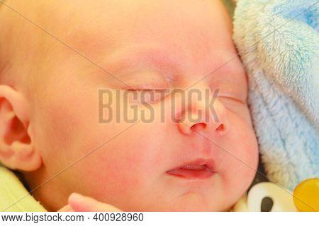 Little Newborn Baby Sleeping Calmly In Blanket