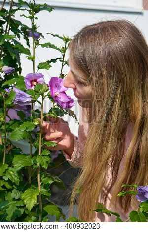Girl With Long Hair Sniffs A Flower, Beautiful Young Woman With Fluffy Hair Sniffs A Hibiscus Flower
