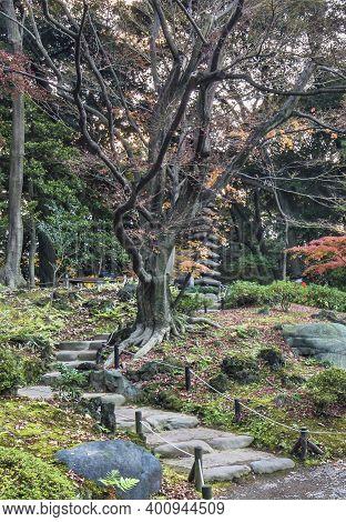 Tokyo, Japan - December 08 2020: Tokyo Metropolitan Park Kyufurukawa Japanese Garden's Stone Stairs