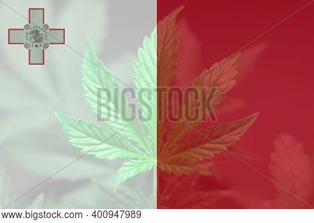 Cannabis Legalization In The Malta. Weed Decriminalization In Malta. Medical Cannabis In The Malta.