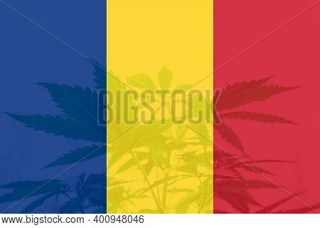 Weed Decriminalization In Romania. Medical Cannabis In The Romania. Leaf Of Cannabis Marijuana On Th