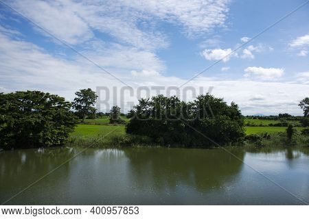 View Landscape Natural Pond And Paddy Rice Field Park Outdoor At Singburi City In Sing Buri Province