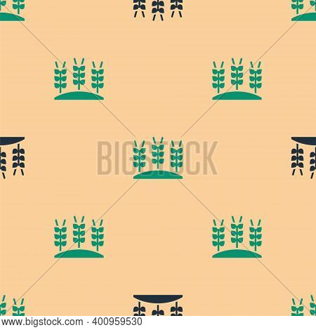 Green And Black Cereals Set With Rice, Wheat, Corn, Oats, Rye, Barley Icon Isolated Seamless Pattern