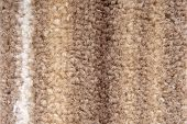 close up of the carpet texture macro poster
