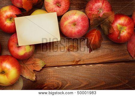 autumn frame background