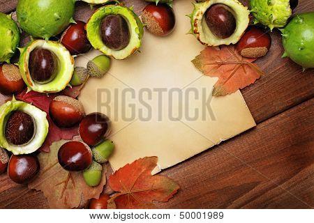 autumnal frame background