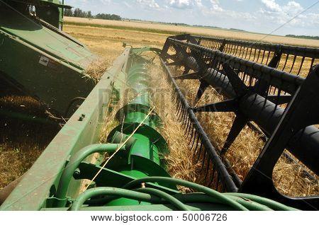 A Combine Loads Grain In A Truck