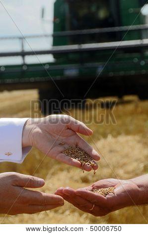 Men Pour Palm Grain
