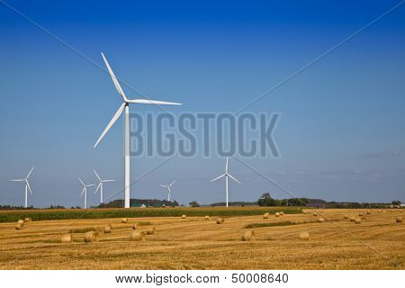 Wind Turbine on the farmer field