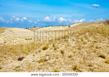 Sandy Dunes And Dry Grass