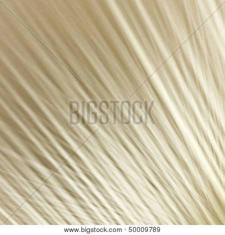 diagonal strips neutral background illustration