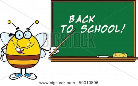 Pudgy Bee Character With Glasses With A Pointer In Front Of Blackboard