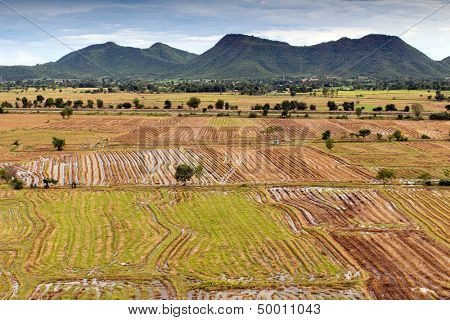Asian rice field after harvest in Kanchanaburi province, Thailand