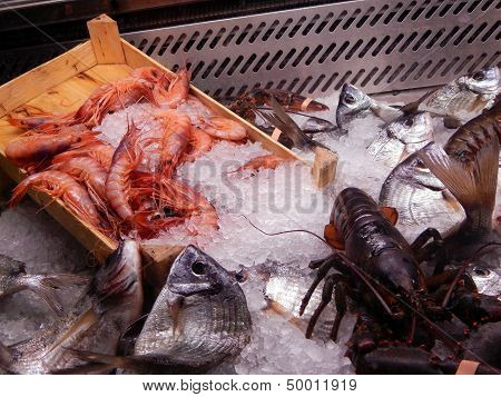 Display of fresh fish at the restaurant