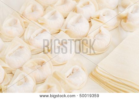Homemade Chinese dumpling with raw material