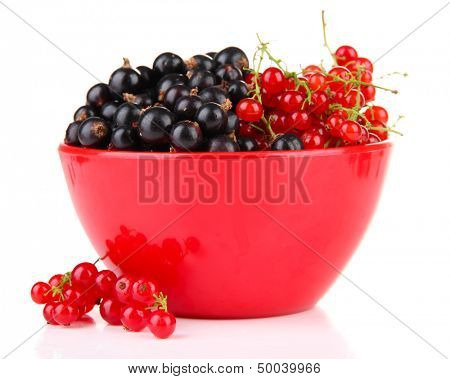 Red and black currant in bowl isolated on white