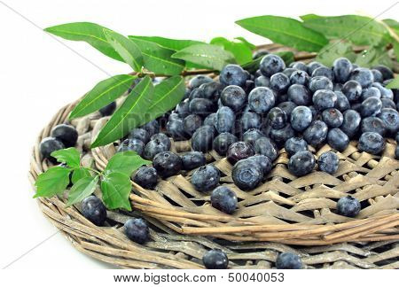Blueberries on wicker tray isolated on white