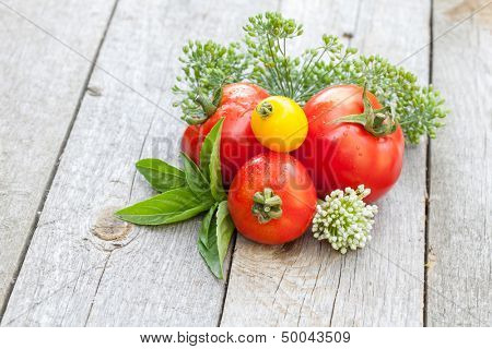 Fresh ripe tomatoes and herbs on garden table