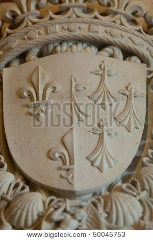 Heraldic motifs in the castle Amboise. .Valley of the river Loire. France