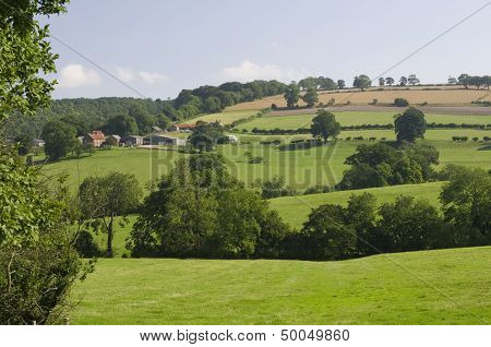 Farm on The Yorkshire Wolds