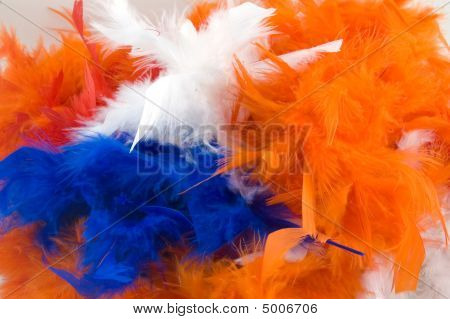 Boa For Dutch Holiday Called Queensday
