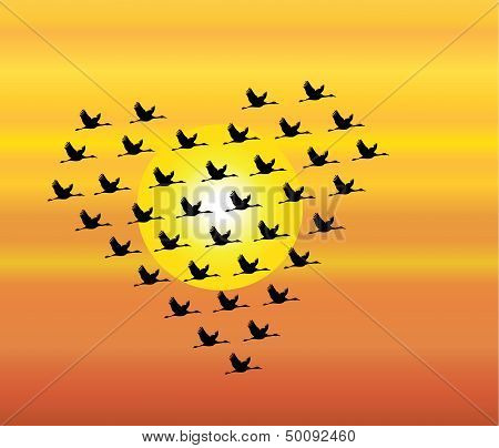 Black Silhouettes Of Swans Flying Or Geese Flying Or Crane Flying Heart Shape Evening sky sun