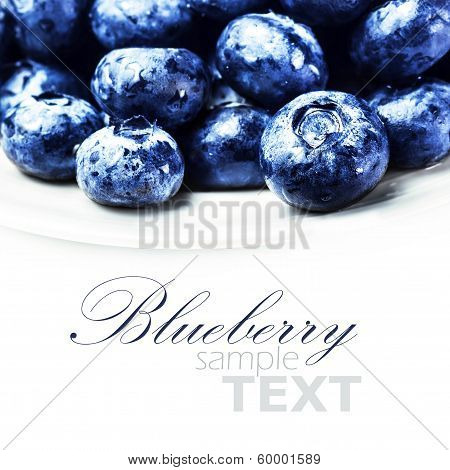 Fresh Blueberries  Isolated On White Background Macro. Blueberry Antioxidant Superfood On White Plat