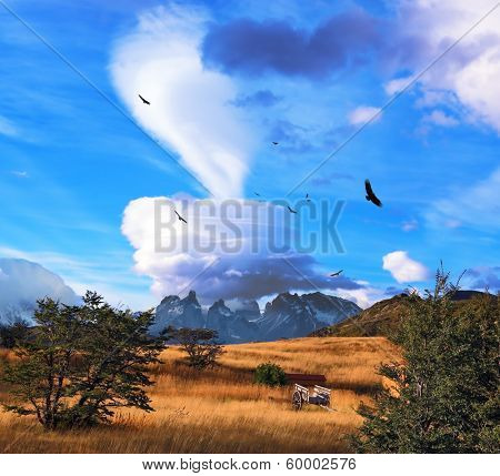 Magic cloud and flocks of Andean condors in southern Patagonia. Amazingly beautiful sunset illuminates the valley and the mountains of bright light