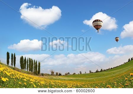 Alley slender cypress trees beautifully into the landscape. Two balloons flying in the blue sky. Wonderful meadow with green grass and yellow buttercups