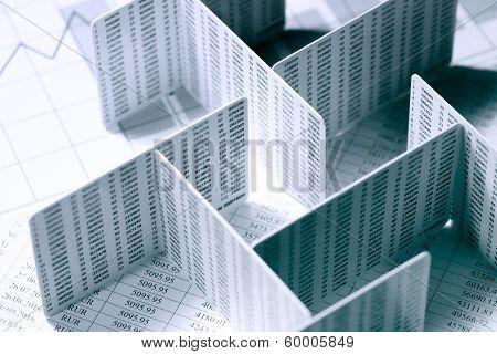 Financial Labyrinth